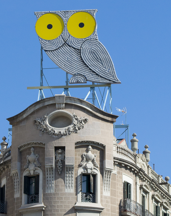Barcelona Owl